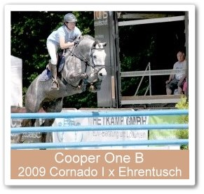 Cooper One B - Westfalen Champion 2013